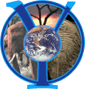Yale Institute for Biospheric Studies logo
